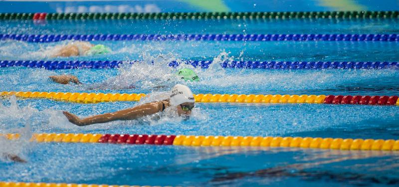Reinsurance data usgae similar to Olympics.png